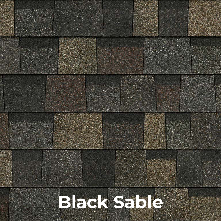 designer-black-sable